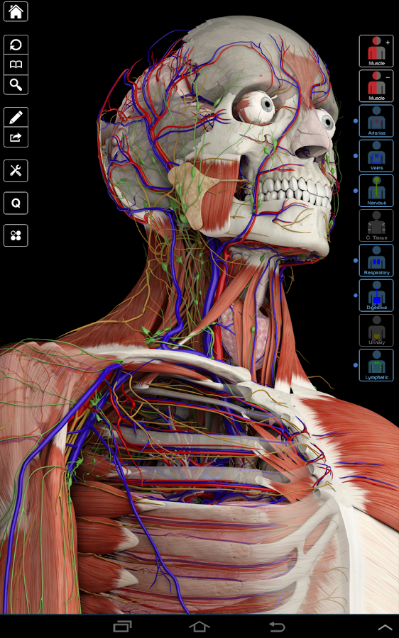 Descargar Essential Anatomy 3 APK